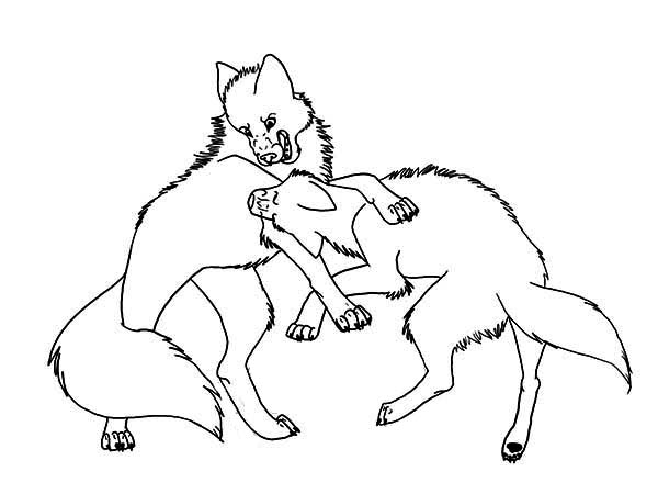 Wolf Fighting Coloring Page Download Print Online Coloring Pages For Free Color Nimbus
