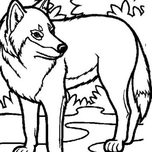 Wolf Hiding Behind Bush Coloring Page