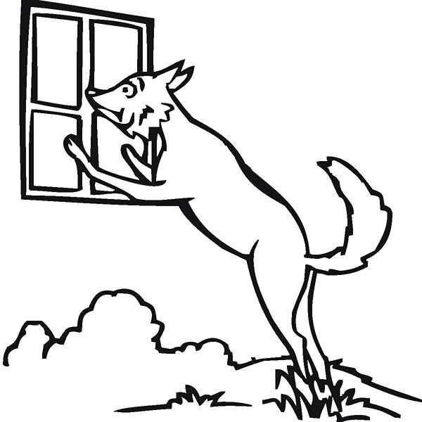 Wolf Peeking At Window Coloring Page Download Print Online