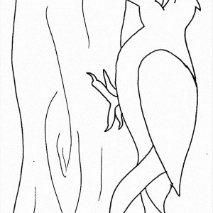 Woodpecker Bird Coloring Page