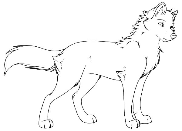 Young Wolf Coloring Page Download Print Online Coloring Pages