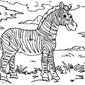 Zebra At The Meadow Coloring Page