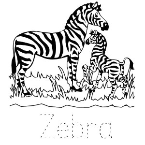 Zebra In The Zoo Coloring Page