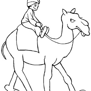 A Man Riding Camel Coloring Page