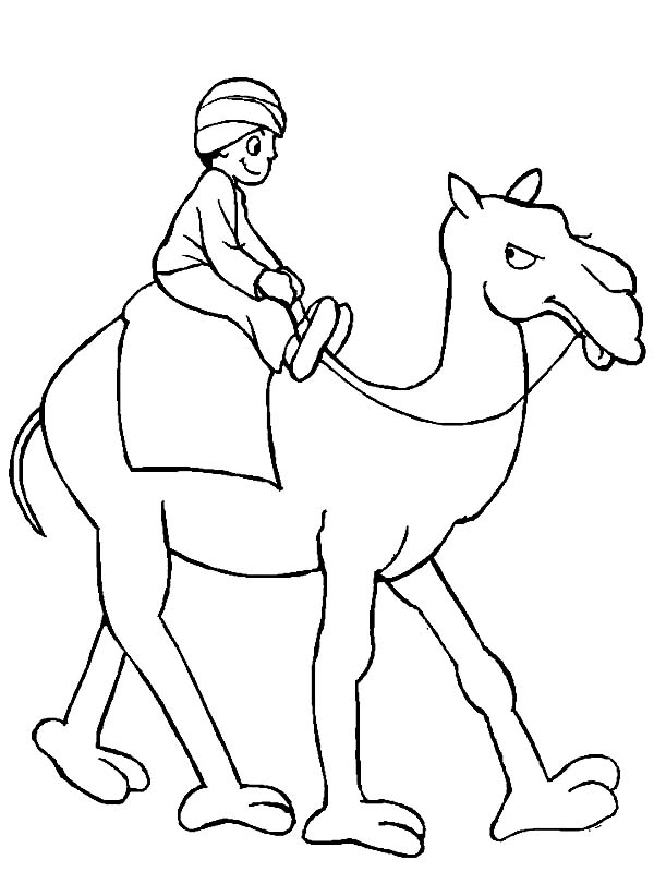 A Man Riding Camel Coloring Page - Download & Print Online ...