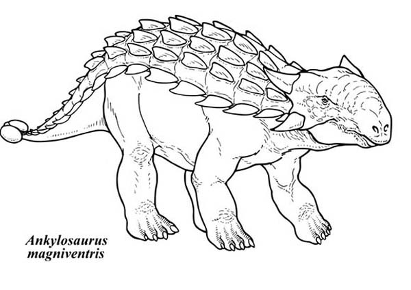 Ankylosaurus Magniventris Coloring Page Download Print Online Coloring Pages For Free Color Nimbus