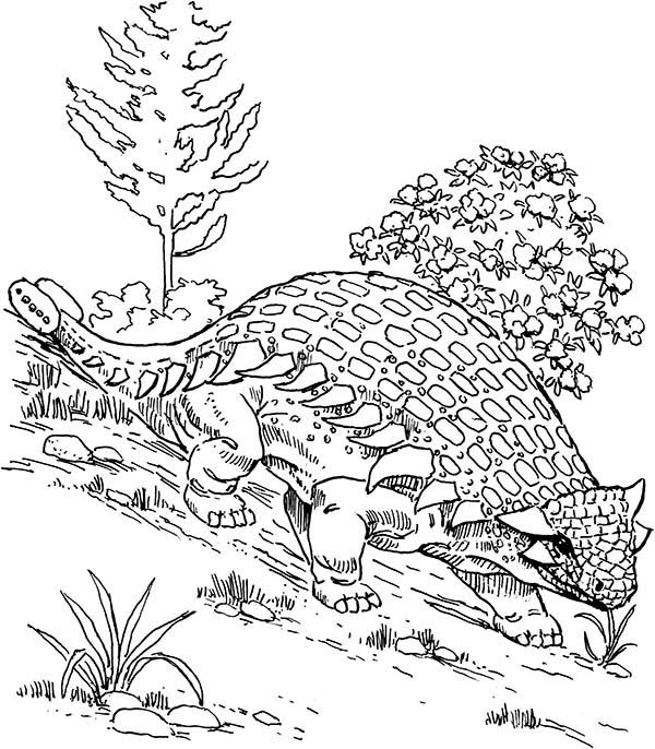 ankylosaurus coloring pages - photo#23