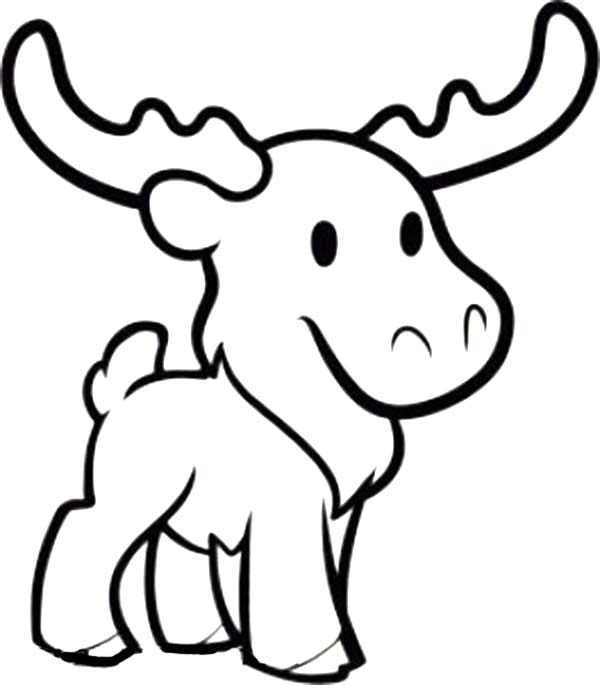 Cute Moose Coloring Page Download Print Online Coloring Pages