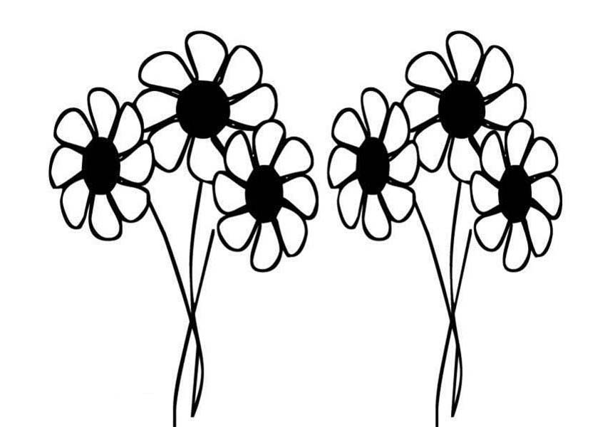 Daisy Flower Drawing Coloring Page Download Amp Print
