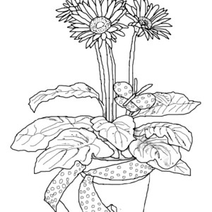 Daisy Flower In Pottery Coloring Page