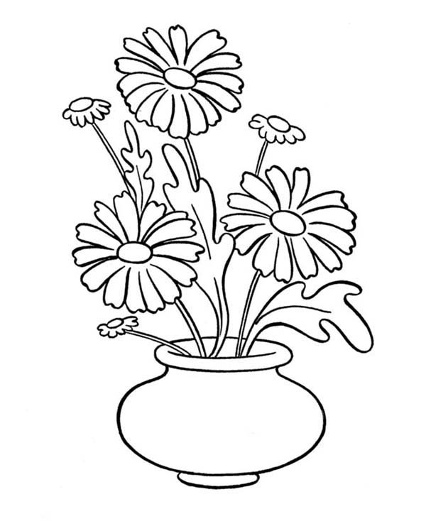 Daisy Flower In Vase Coloring Page Download Print Online