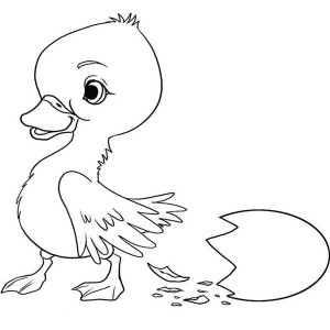 Duckling And Egg Shell Coloring Page
