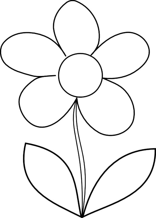 How to Draw Daisy Flower Coloring Page - Download & Print ...