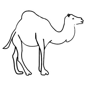 Kids Drawing Of Camel Coloring Page