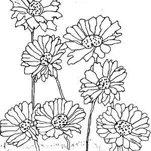 Planting Daisy Flower Coloring Page