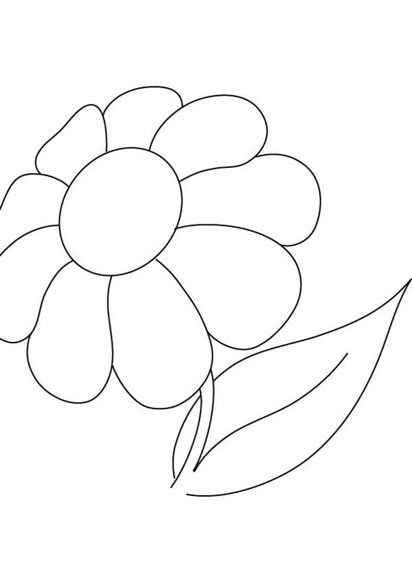 Pretty Picture Of Daisy Flower Coloring Page - Download ...