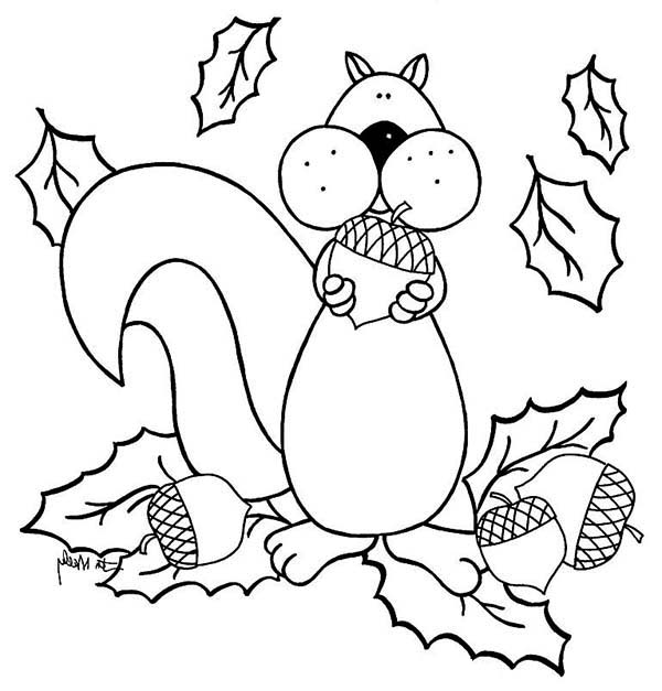 Squirrel Love To Eat Acorn Coloring Page - Download ...