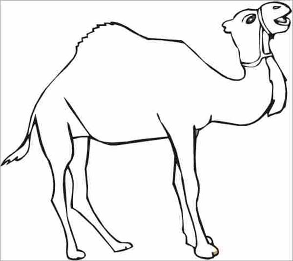 Thirsty Camel Coloring Page - Download & Print Online ...