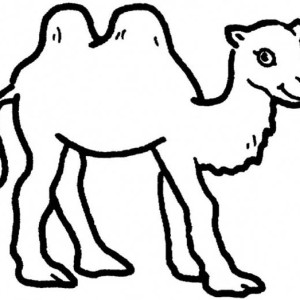 Two Humped Camel Coloring Page