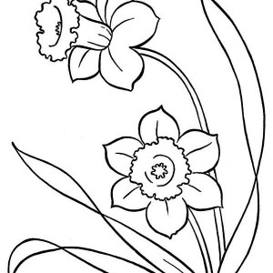 Blooming Flower On Springtime Coloring Page