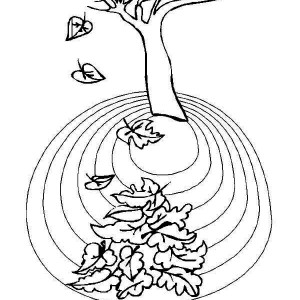 Area Of Autumn Leaf Coloring Page