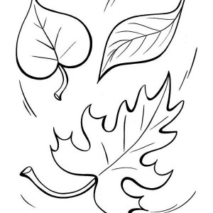 Autumn Leaf To The Ground Coloring Page
