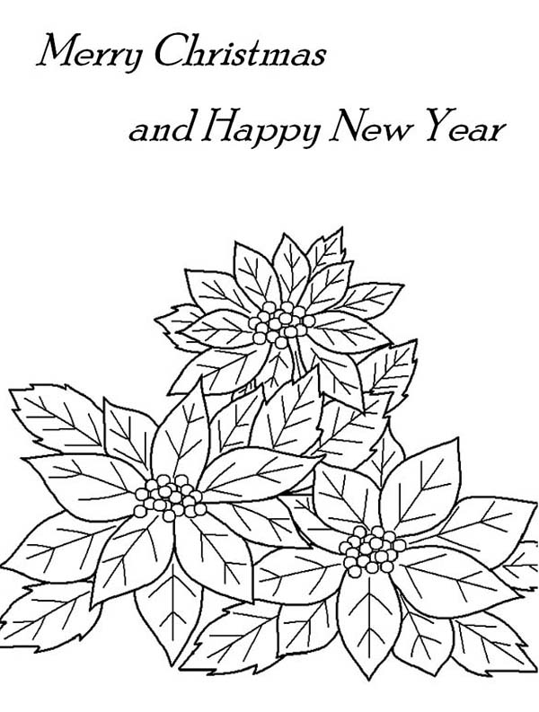 christmas and new years eve decor with poinsettia flower
