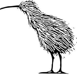 Alpha Male Kiwi Bird Coloring Pages
