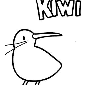 Baby Kiwi Bird Coloring Pages