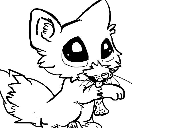 Cute Baby Fox Coloring Page Download Amp Print Online