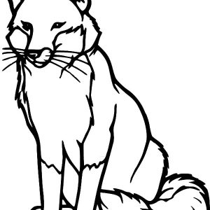 Drawing Kit Fox Coloring Pages