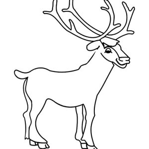 Drawing Young Elk Coloring Pages