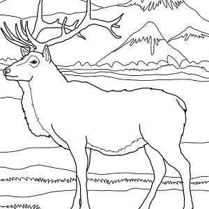 Elk By The Mountain Coloring Pages