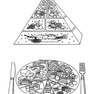 Food Guide Pyramid A Guide To Daily Meal Coloring Pages