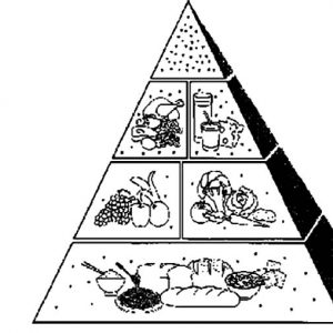 Full Of Vitamins And Nutrious Food Pyramid Coloring Pages