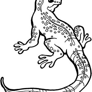 Great Monitor Lizard Coloring Pages