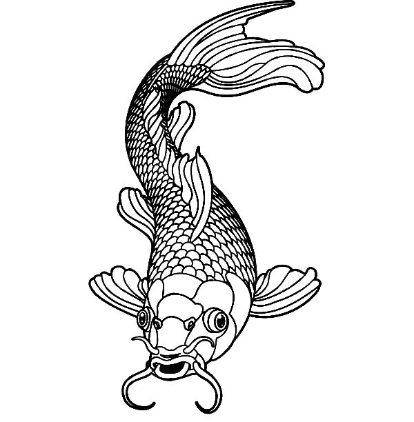 koi fish coloring pages Healthy Male Koi Fish Coloring Pages   Download & Print Online  koi fish coloring pages