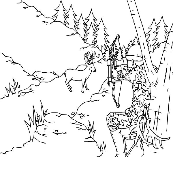 7 Elk Coloring Pages in 2020 | Australia animals, Horse coloring ... | 600x600