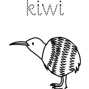 K Is For Kiwi Bird Coloring Pages