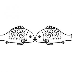 Kissing Gourame Fish Coloring Pages