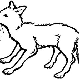 Kit Fox Sniffing Coloring Pages