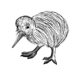 Kiwi Bird Chick Coloring Pages