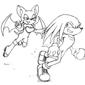 Knuckles And His Admirer Coloring Pages