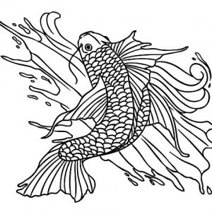 Koi Fish Splashing Water Coloring Pages