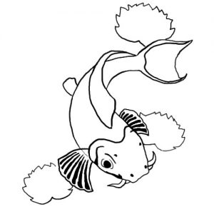 Koi Fish Swimming Coloring Pages