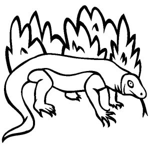 Komodo Dragon Outline Coloring Pages