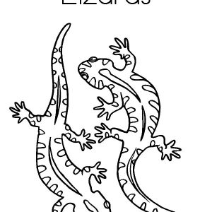 Lizard Couple Mating Coloring Pages