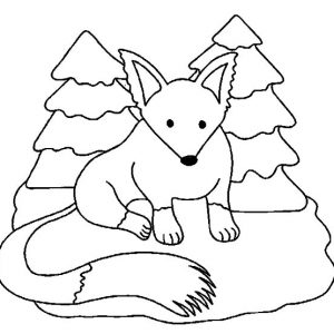 Long Tailed Kit Fox Coloring Pages