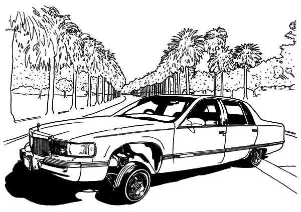 Lowrider Cars Show Coloring Pages Download Print Online Coloring
