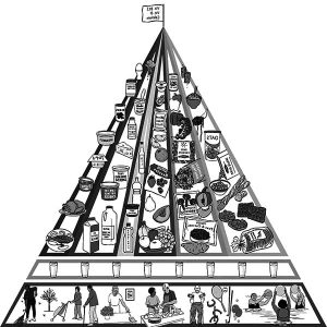 Modified Food Pyramid For Older People Coloring Pages